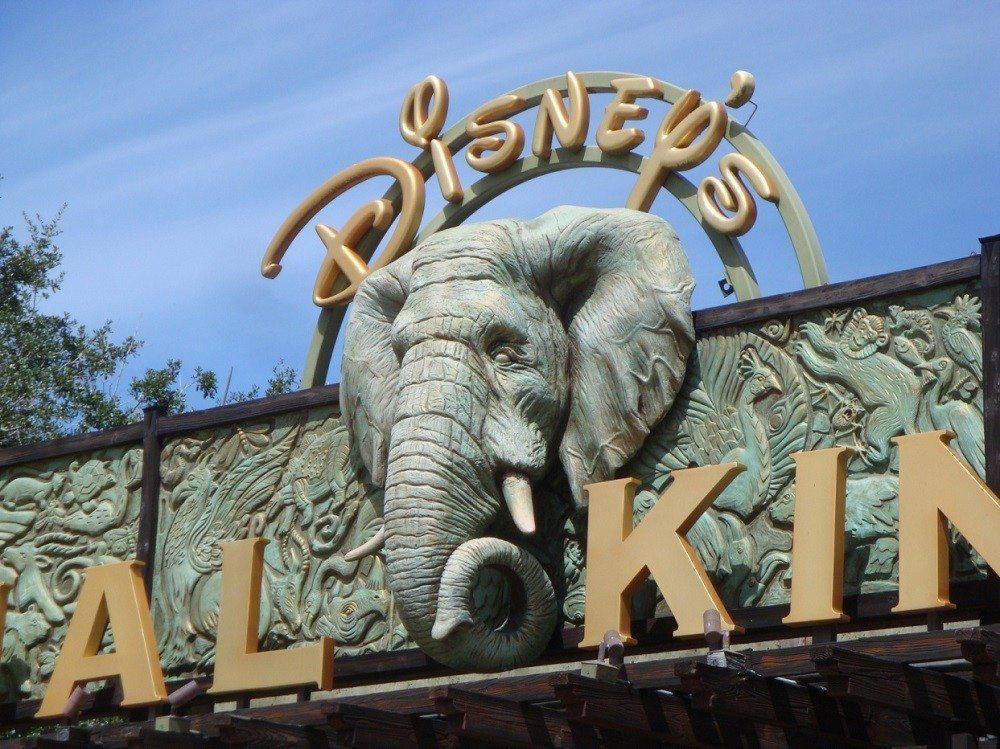 Florida met kids: Street in key west, florida: Disney Land Animal Park, Verenigde Staten