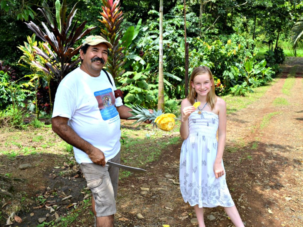Costa Rica with kids: pineapple fields