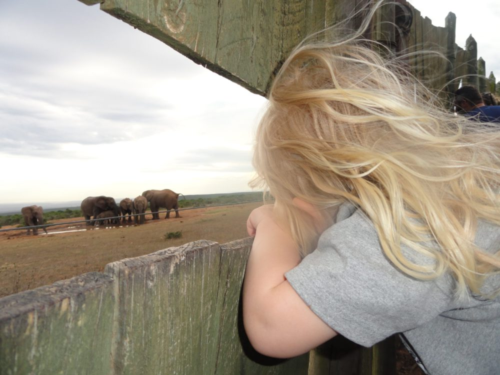 Kids Love Travel: Zuid Afrika