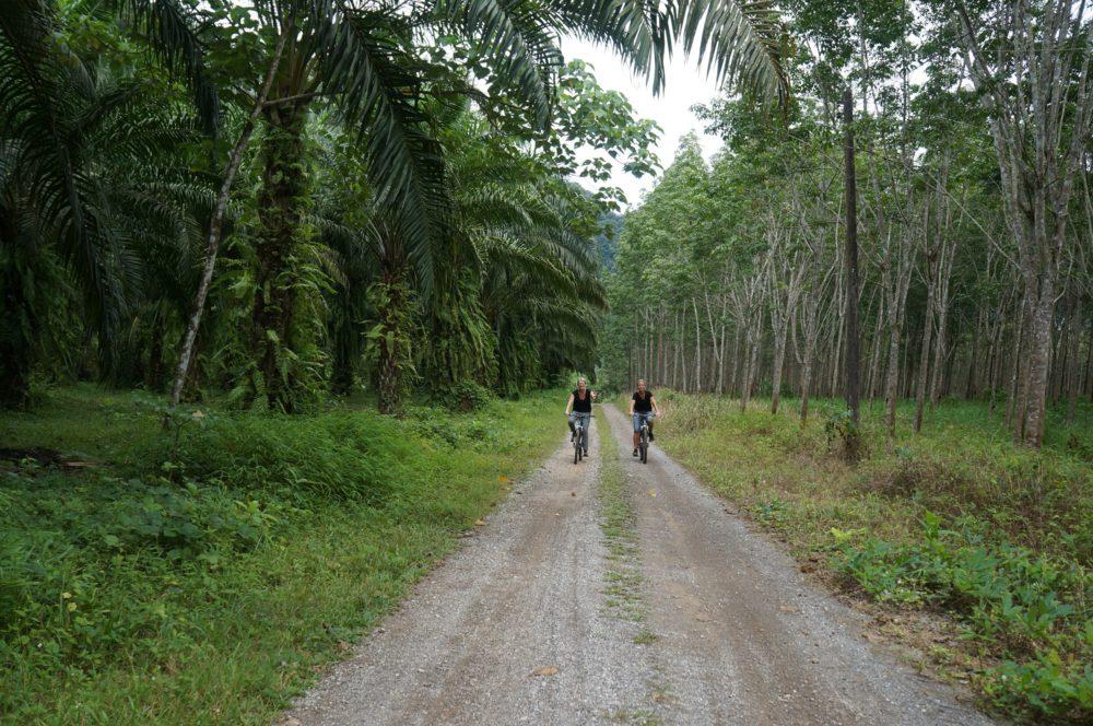Kids Love Travel: Thailand met kinderen