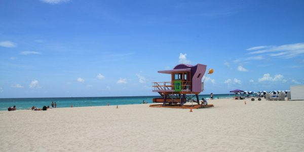 Kids Love Travel: miami with kids