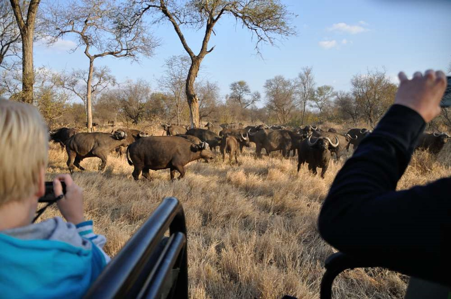 Kids Love Travel: Sightseeing in South Africa with kids