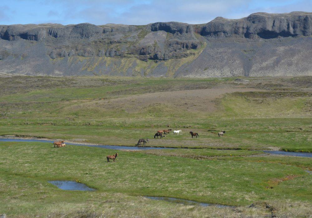 Kids Love Travel IJsland met kinderen