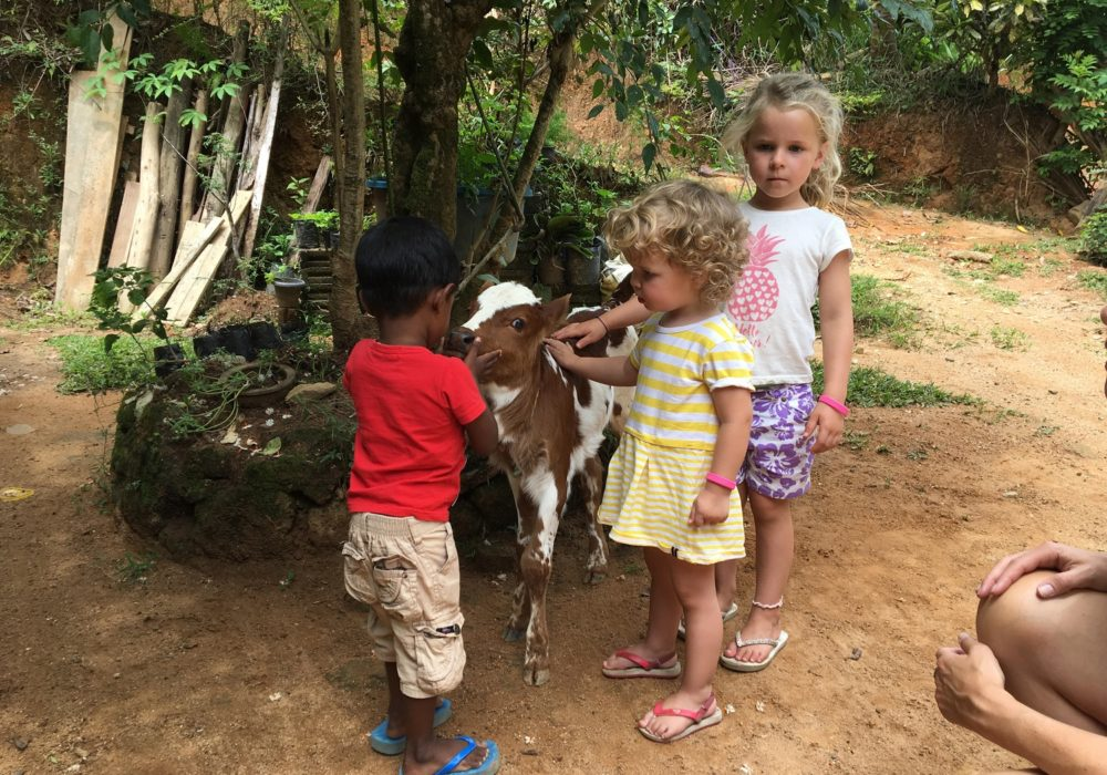 Kids Love Travel: Sri Lanka with kids