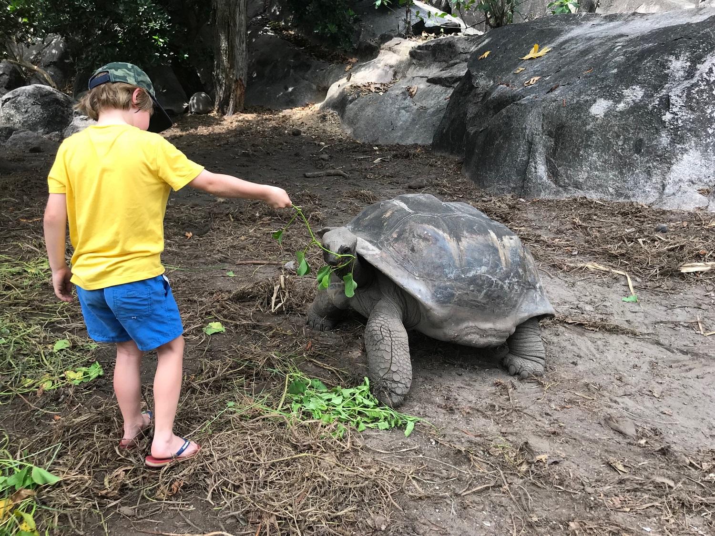 Kids Love Travel 10 dagen Seychellen met kinderen