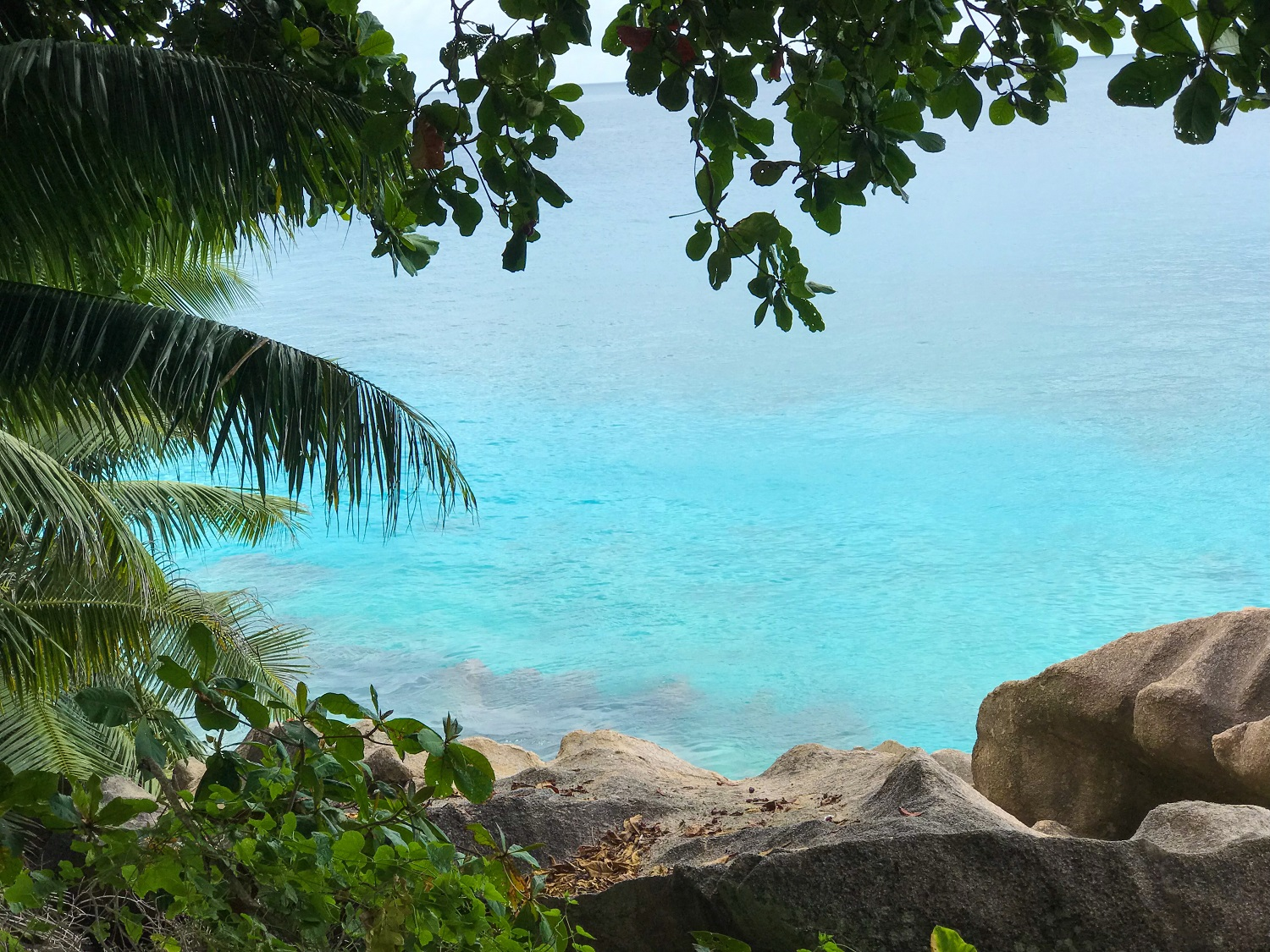 Kids Love Travel: 10 days Seychelles with kids