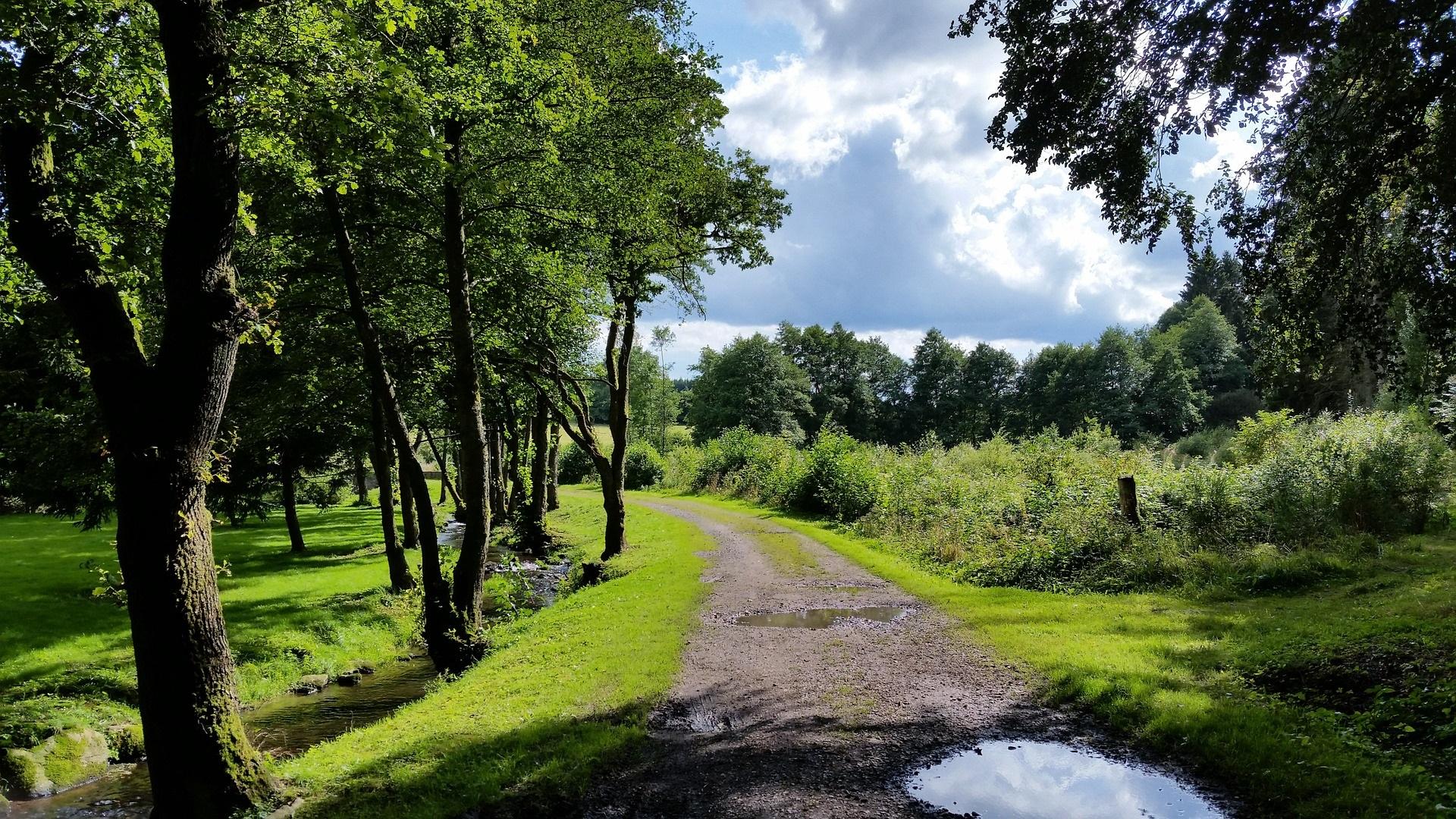 Kids Love Travel: Ardennes with kids