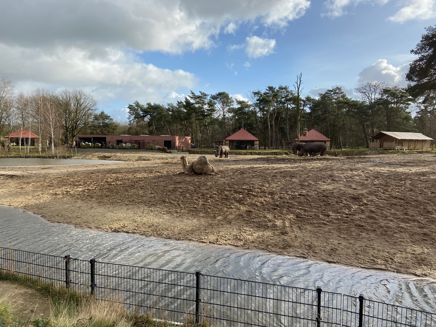 Kids Love Travel: Review Beekse Bergen Safari Resort