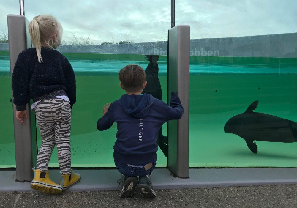 Kids Love Travel: kindvriendelijk op vakantie in de herfstvakantie